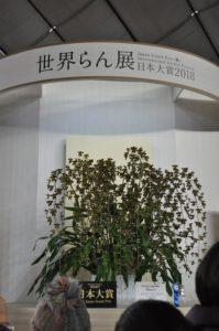 2018年の日本大賞