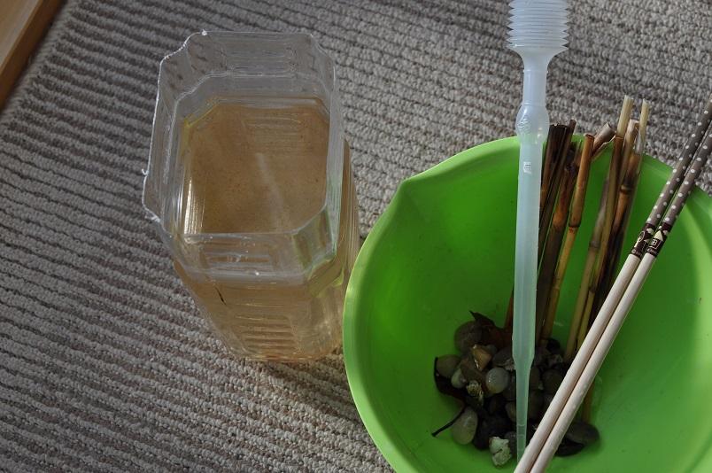 茶ゴケ回収1