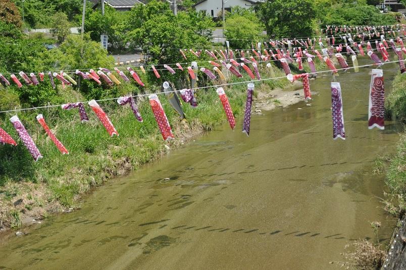 川に渡された鯉のぼりなど