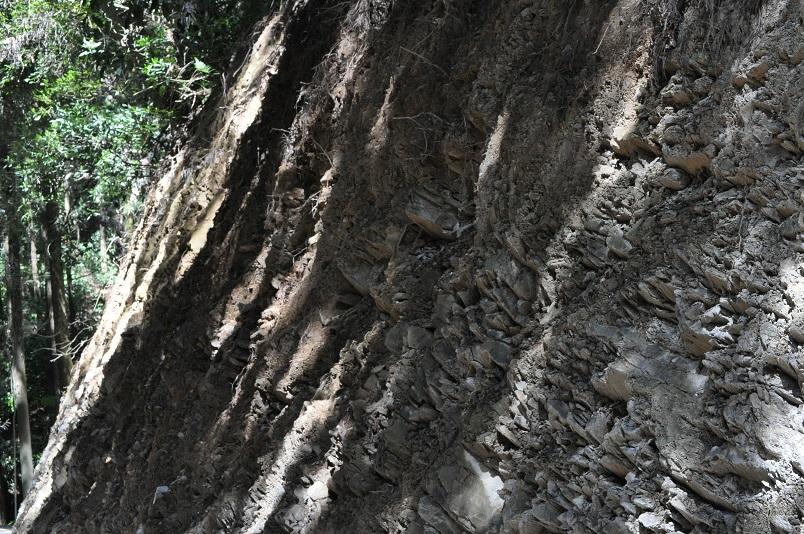 脆い岩で構成された急な斜面