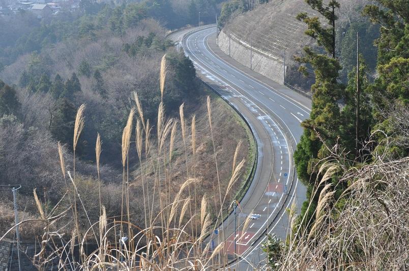 山側道路風景