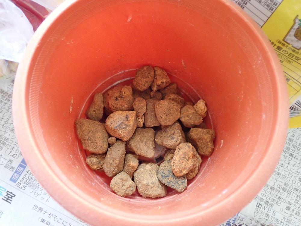 桐生砂大粒を鉢底石として使用
